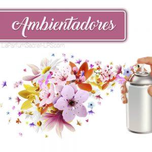 CATEGORIA AMBIENTADORES